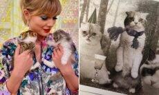 Taylor Swift lança cartões de Natal estrelados por seus gatos