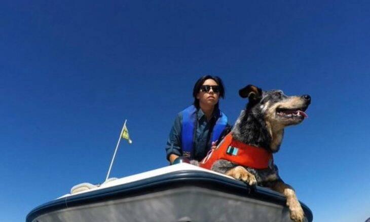 Conheça os cães que estão ajudando a proteger baleias contra a extinção