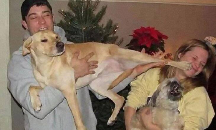 Confira 10 momentos em que cães arruinaram fotos da família