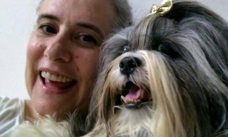 Terapia com células-tronco recupera cadela lhasa apso com ruptura de ligamento