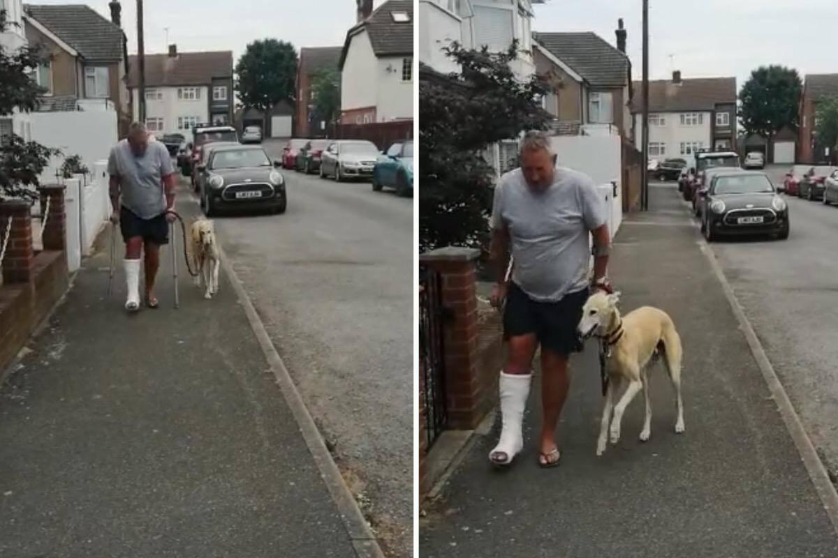 Vídeo: Cão imita dono manco num exemplo comovente de solidariedade