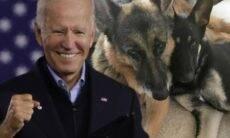 Conheça Champ e Major, os primeiros cães de abrigo a morar na Casa Branca