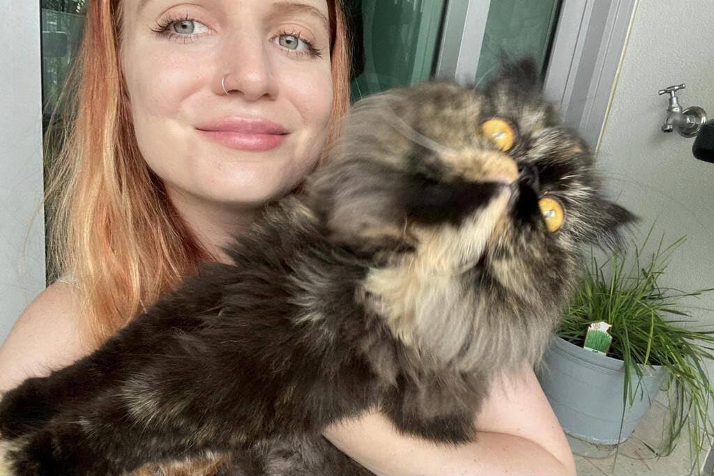 Conheça a mulher que viaja com tudo pago só para tomar conta de gatos alheios