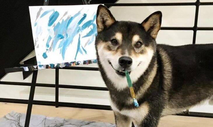 Conheça Hunter, o cão pintor que está fazendo dinheiro com sua arte abstrata