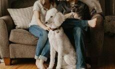 Pets estão entre os principais destruidores das noites de sexo no Reino Unido, diz estudo