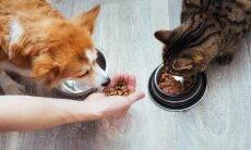 Aprenda a interpretar os pacotes e escolha a melhor ração para o seu pet