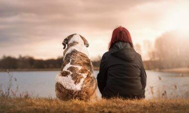 Veja 6 maneiras como cães ajudam pessoas com depressão ou ansiedade