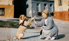 Entenda por que donos 'espelham' a personalidade dos seus cães ou gatos