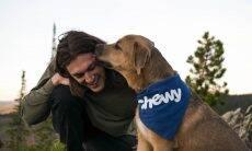 Cães farejam a verdade e sabem quando donos estão mentindo, diz estudo