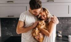 Está com problemas no relacionamento? Um gato pode ajudar você, diz estudo