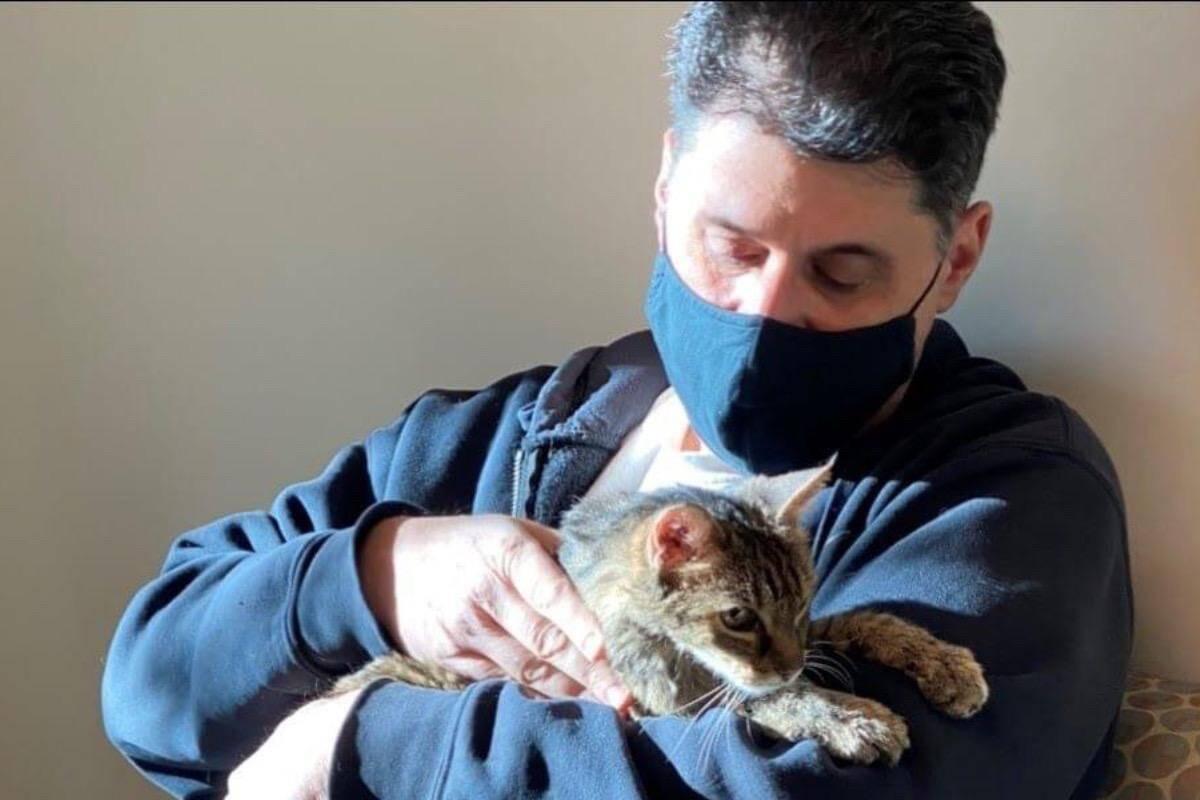 Gato desaparecido reencontra o dono 15 anos depois