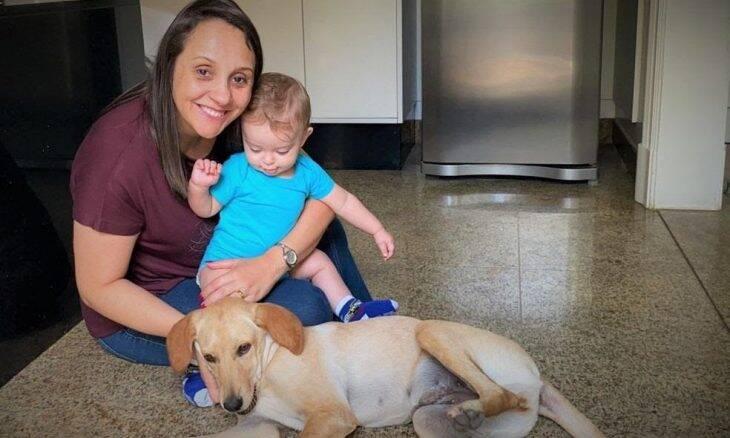 Deputada propõe a criação de 'SUS' e farmácia popular para pets