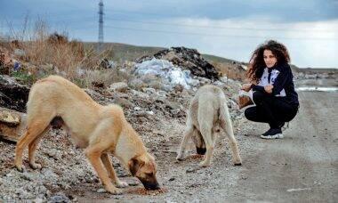 Conheça a artista que vende suas pinturas para alimentar cães de rua