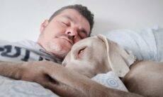 Afinal de contas, é seguro dormir com cães ou gatos?