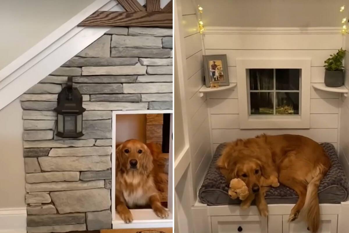Homem constrói casinha de R$ 26 mil para seu cão, com lareira e TV