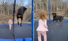 Menina de 3 anos e rottweiler protagonizam vídeo fofo em cama elástica