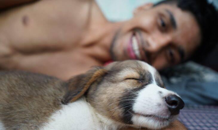 Pesquisa: para 78% dos donos, pets ajudaram a diminuir estresse e ansiedade na pandemia