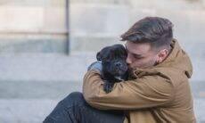 Má notícia: seu cão pode não te amar o tanto que você imagina