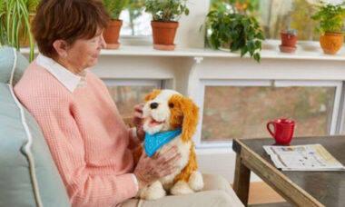 Cães-robô ajudam no tratamento de pacientes com demência