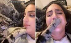 Vídeo hilário: gato ciumento não deixa dona chamar a outra felina da casa