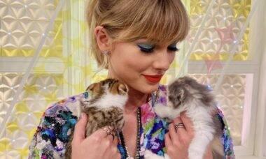 De Taylor Swift a Ed Sheeran: conheça os gatos mais mimados pelos famosos