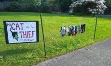 Com placa, dona avisa que seu gato é ladrão e se compromete a devolver bens furtados