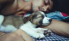5 razões pelas quais você deveria dormir com o seu cão