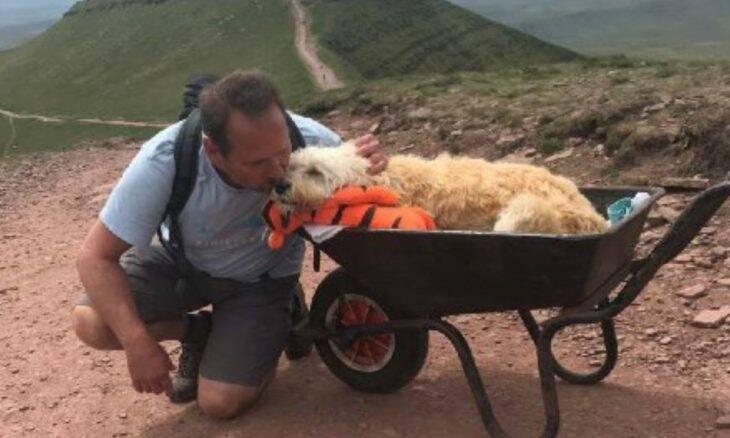 Fotos: dono leva cão em estado terminal para último passeio em sua montanha preferida