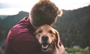 Pesquisa mostra como os pets 'salvaram' nossas vidas durante a pandemia