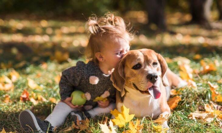 As 25 melhores raças de cães para uma família com crianças