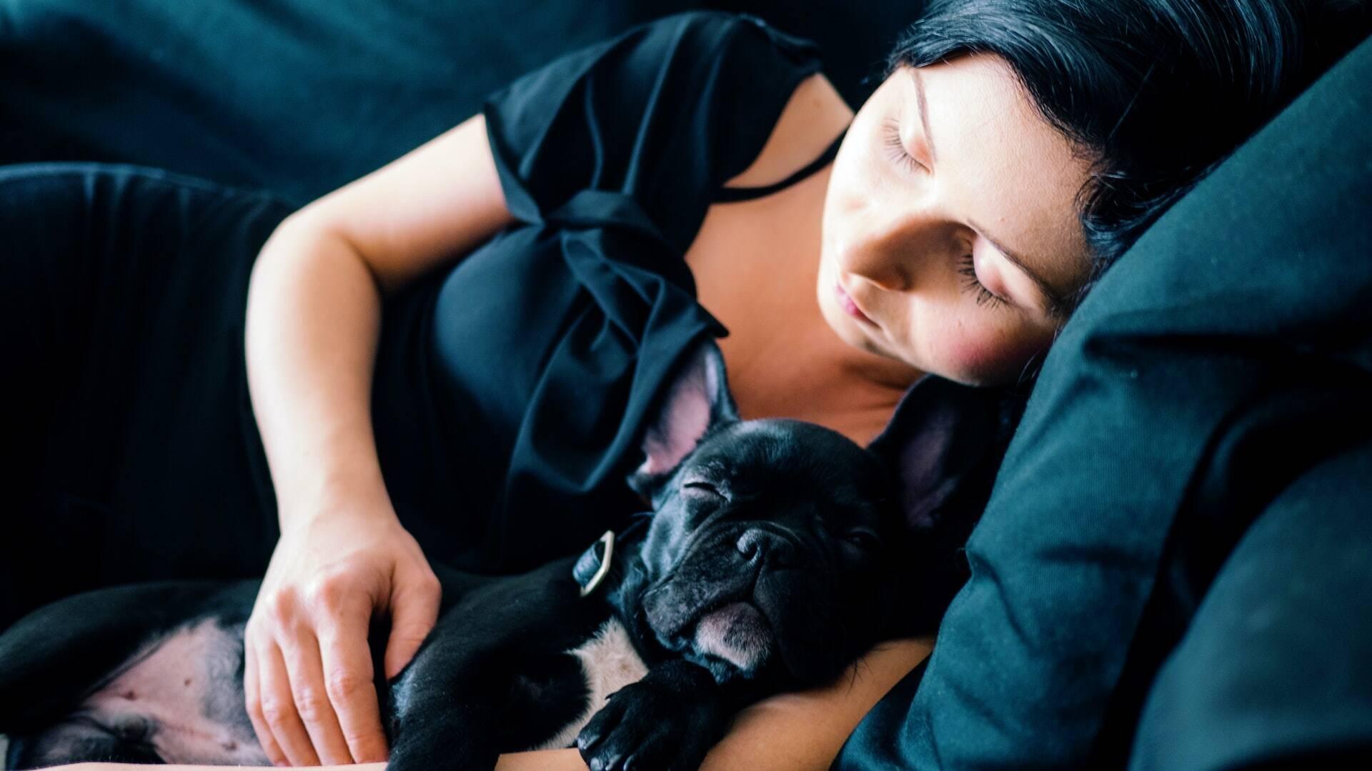 Mulheres dormem melhor com um cão na cama do que com um homem, indica estudo