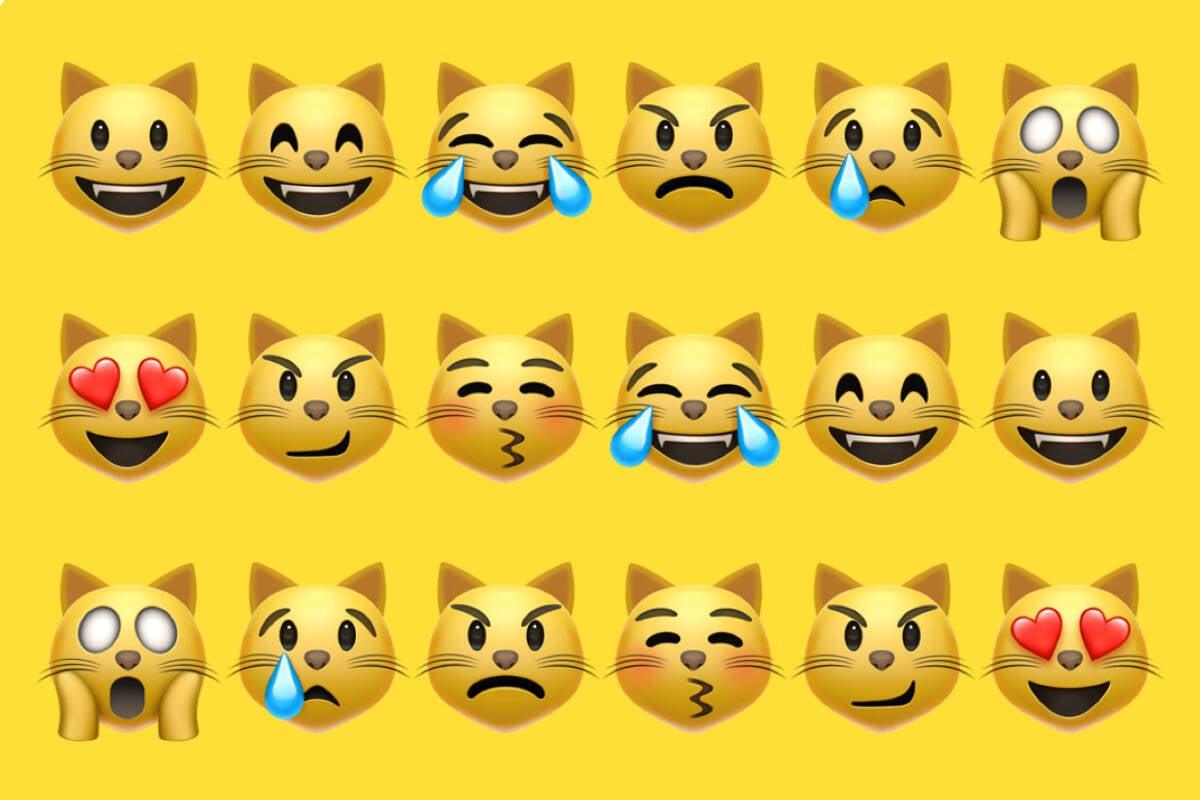 Saiba por que há 9 emojis de gato no WhatsApp e o que eles significam