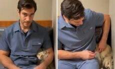 Vídeo: gato tímido só consegue tomar vacina escondido atrás do veterinário