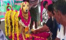 Homem faz estátua de bronze para celebrar o quinto ano da morte de seu cão