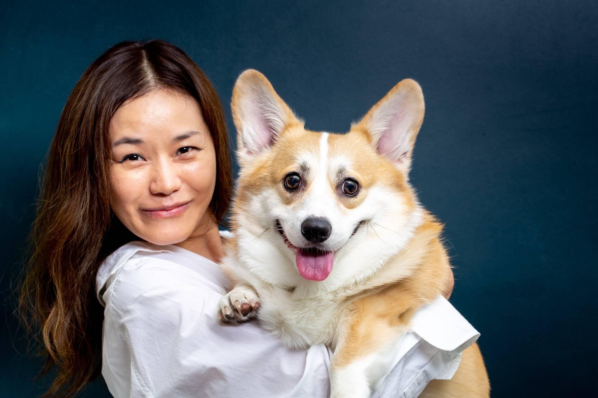 Nova lei garante proteção legal para pets vítimas de abuso na Coreia do Sul