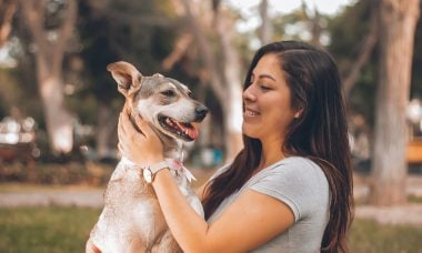 Treinador diz que estamos dando afeto na hora errada aos nossos cães
