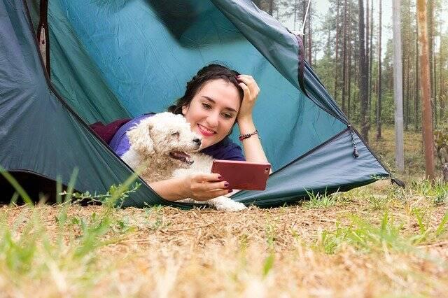 Deu match: Empresa lança 'Tinder' para facilitar uniões perfeitas entre pets e donos