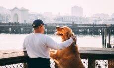 Cães amam mais seus donos do que qualquer petisco, indica estudo