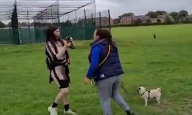 Vídeo: passeadora de cães agride dona de pug violentamente em parque
