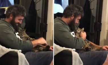Vídeo fofo: veja o que acontece quando um gato de rua decide adotar um humano