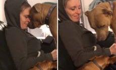 Vídeo: ao descobrir que a dona está grávida, cadela tem reação emocionante