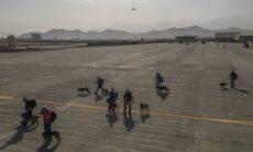 Cães militares dos EUA são evacuados da capital do Afeganistão