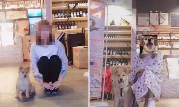 Dona perde seu cão e o reencontra em mercado chinês de carne canina