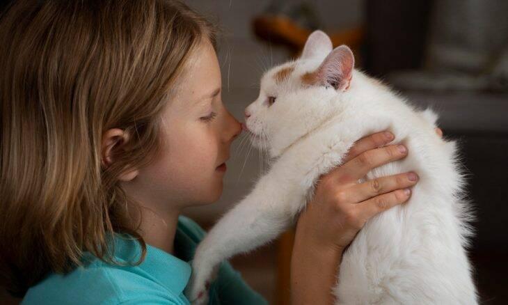 Gatos ficam mais calmos em casas com crianças autistas, diz estudo