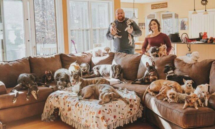 Casal convive com 19 cães e não planeja parar por aí