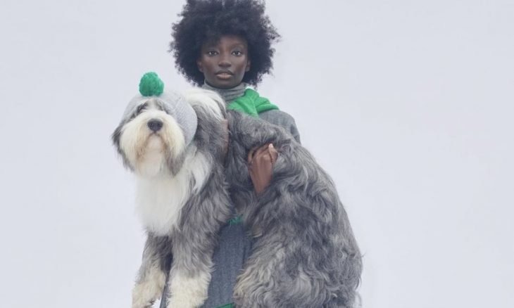 Zara lança coleção que combina roupas para pets e donos; lojistas acharam que era fake news