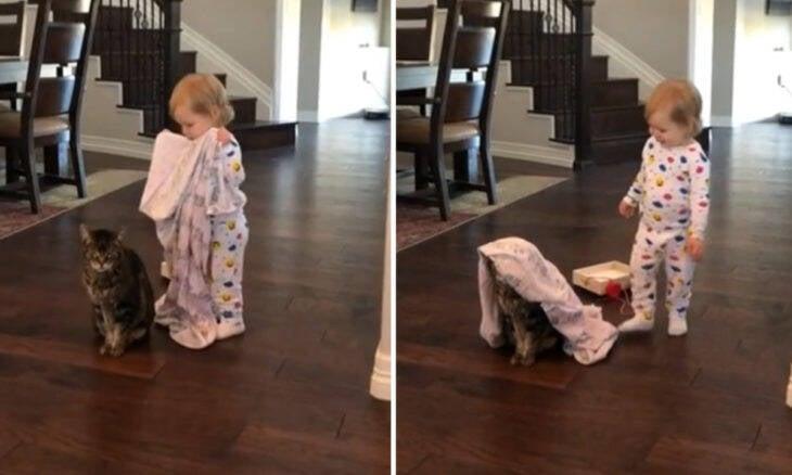 Vídeo viral: bebê joga cobertor sobre gato supreendentemente paciente