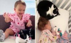 Vídeo no TikTok mostra gato e bebê inseparáveis e encanta a internet
