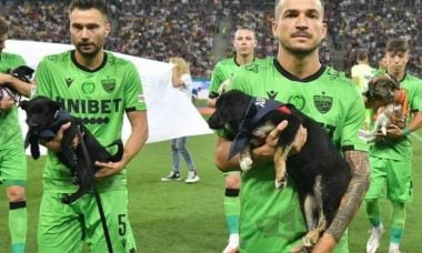 Jogadores de futebol da Romênia apresentam cães para adoção em todos os jogos