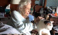 Companheiros na velhice: mulher de 101 anos adota gato de 19